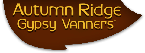 Autumn Ridge Gypsy Vanners